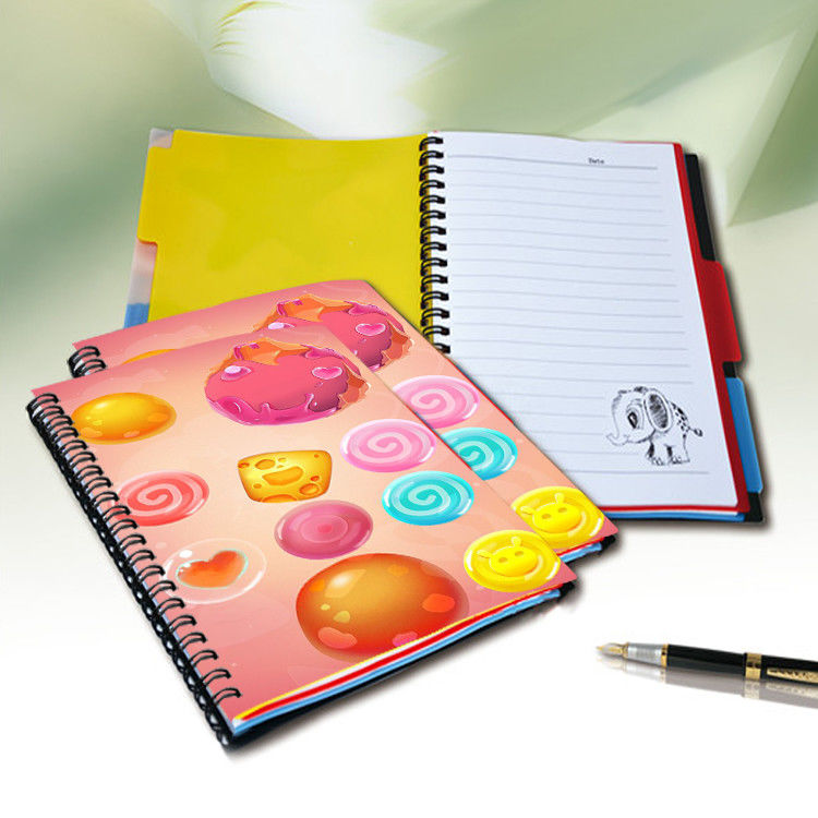 Flip A4 , A5 , A6 Size 3D Lenticular Notebook Cover For Wrinting